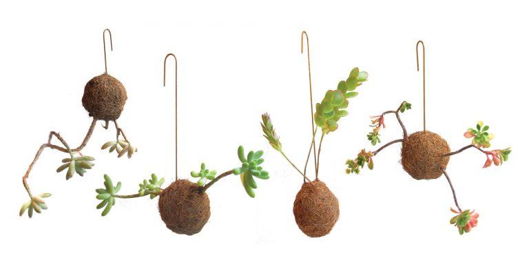 Planteplaneter3