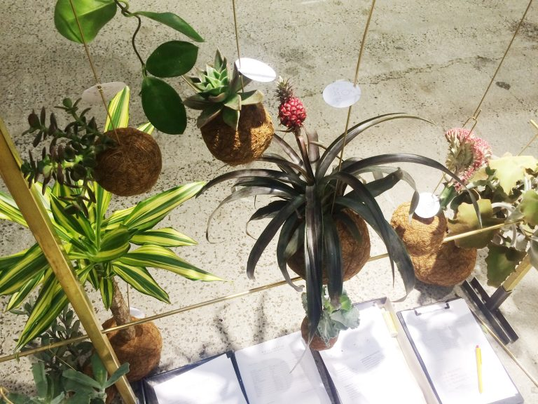 Formland - Kaja Skytte - Planteplaneter