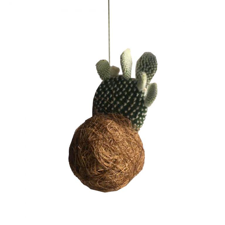 Kaja Skytte Planteplanet Hængeplante Kaktus Uro København Design Unik Gaveidéer Mobile Japanese Inspiration Minimalism Fri fragt Byhave Green Living