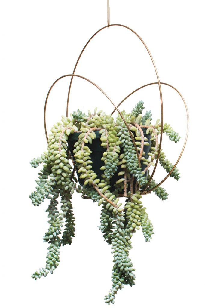 Kaja Skytte Circle Podium Brass Hangin Plate Plant Decoration Danish Design Christmas gift