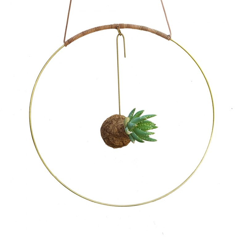 halo_plante_planteplanet_kajaSkytte_brass_planteplaneter_ring