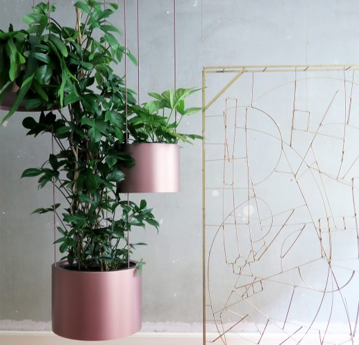 greenspace-kajaskytte-hamginggarden-planteplaneter